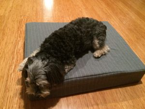 handmade doggie bed
