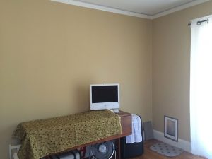 wall color after