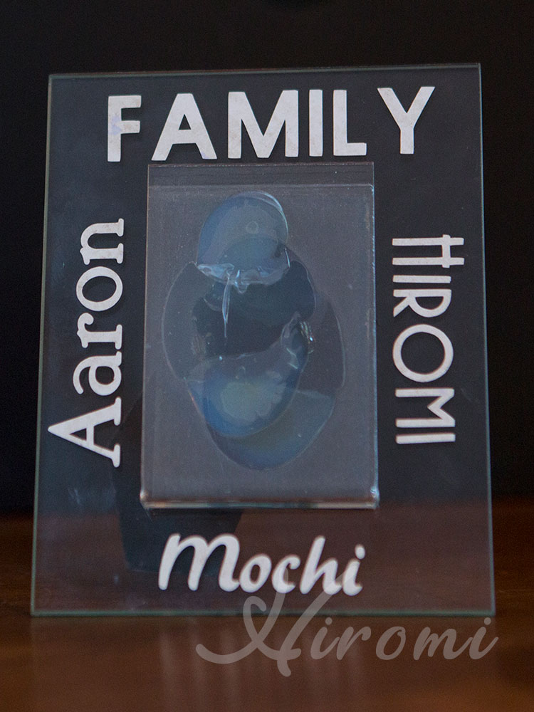 etched glass photo frame